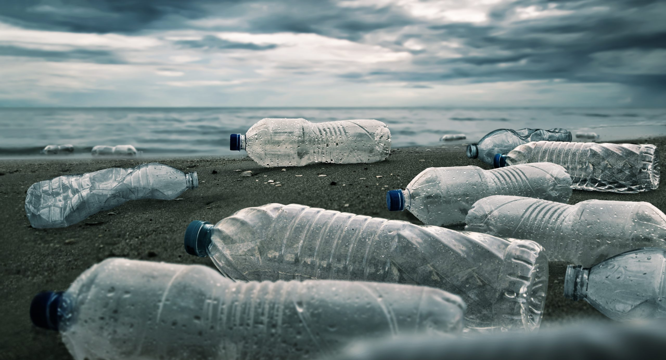 NGOs demand enabling lasting solutions to the plastic crisis for a more resilient economy